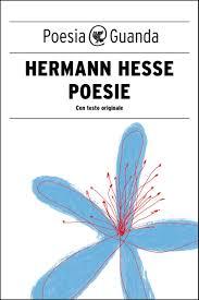 Libro Hesse.jpg