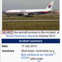 Was MH17 Actually MH370 ? Online Researchers Bring Compelling Evidence To The Table