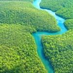 Um caminho para a biodiversidade brasileira