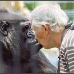 Chéri à Paris: Macacos me mordam!