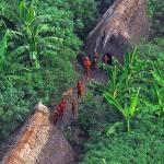 No coração da selva