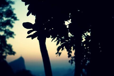 mari_silencio_07