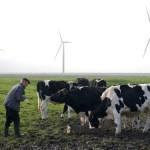Dois projetos para a terra e a agricultura