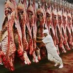 Carne fraca na política econômica e na PF