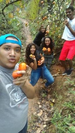 170425_artigo Juliana Dias 2