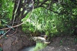 Adventure of Abiola and I (11)