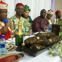 Dates For 2019 New Yam Festival Across Igbo Land