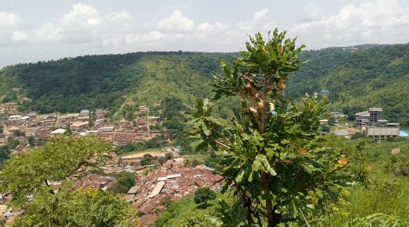 Ugwu Alfred, Enugu State
