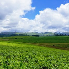 places of interest in Gembu..