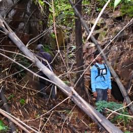 Exploring ogba ngwu (12)