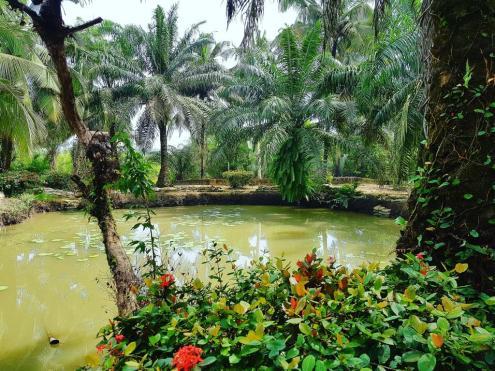 Resort in Calabar (1)