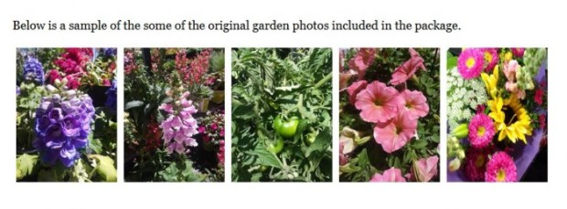 Garden Mania PLR Packages by Dee Power