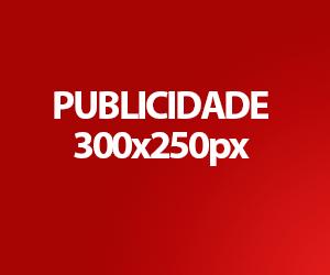 300×250