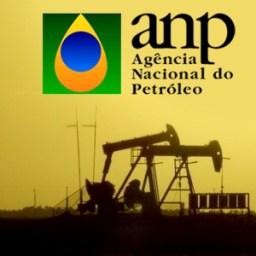 ANP faz previsão otimista sobre investimentos em prtróleo e gás