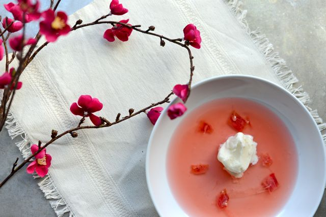 Rhubarb Soup with Yogurt Ice Cream Horizontal
