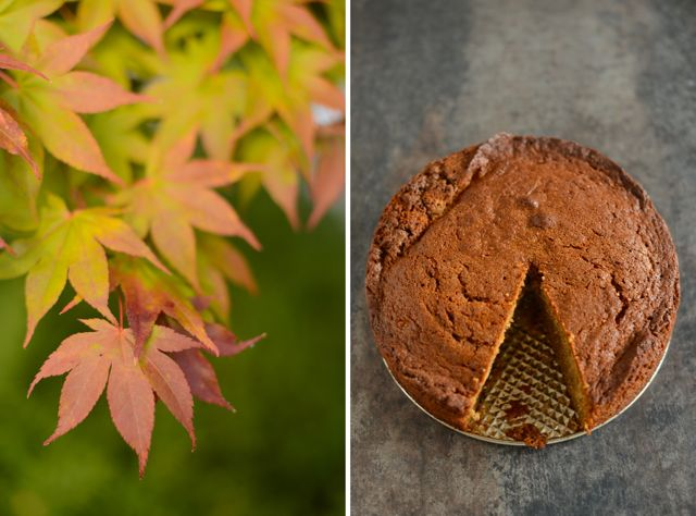 Leaves and Spice Cake