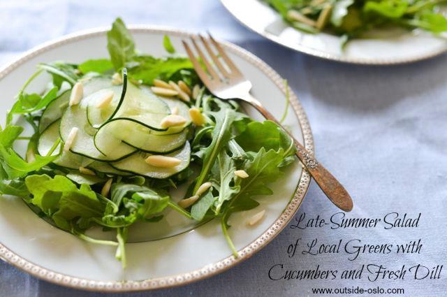 Seasonal Greens Salad with Cucumber