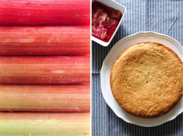Rhubarb and Almond Cake Diptych