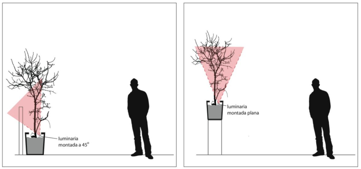 iluminación de jardineras