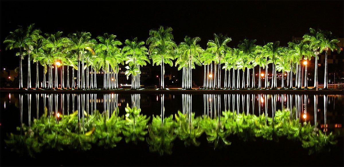 iluminación exterior de árboles en jardines