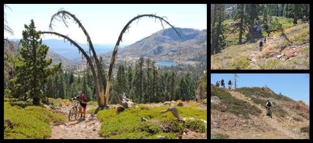 Mountain Biking in Grouse Ridge