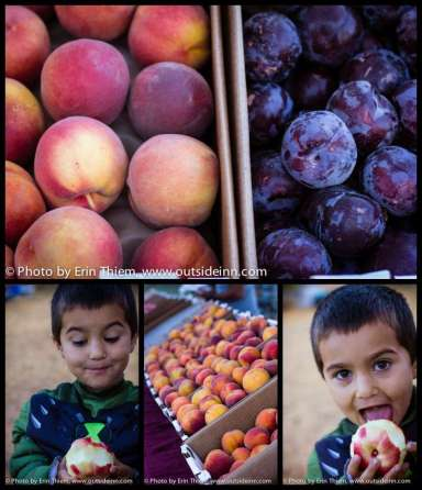 Peaches and plums from Urbina Family Farms