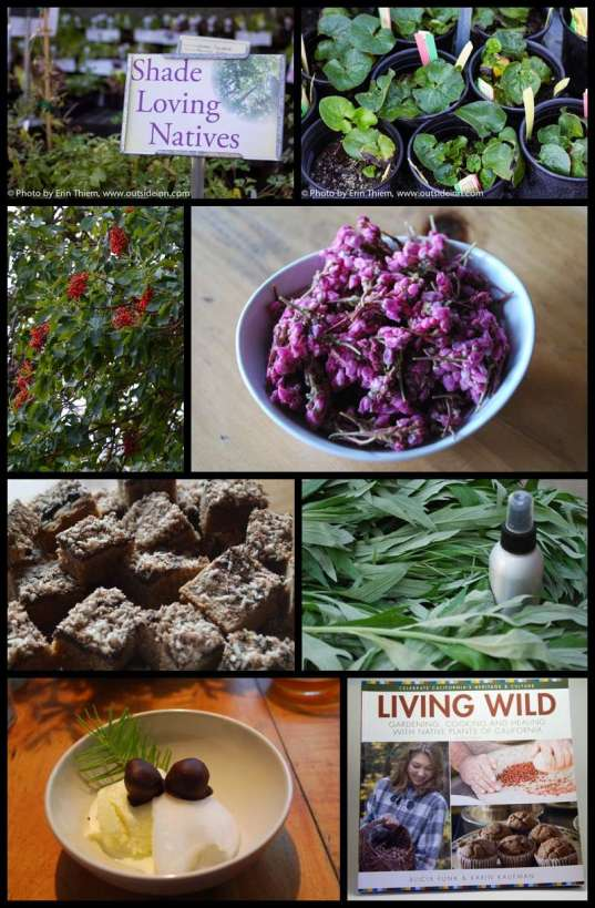 Nevada City Native Plants, Living Wild