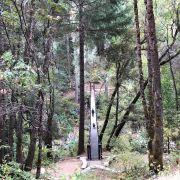 Deer Creek Tribute Trail