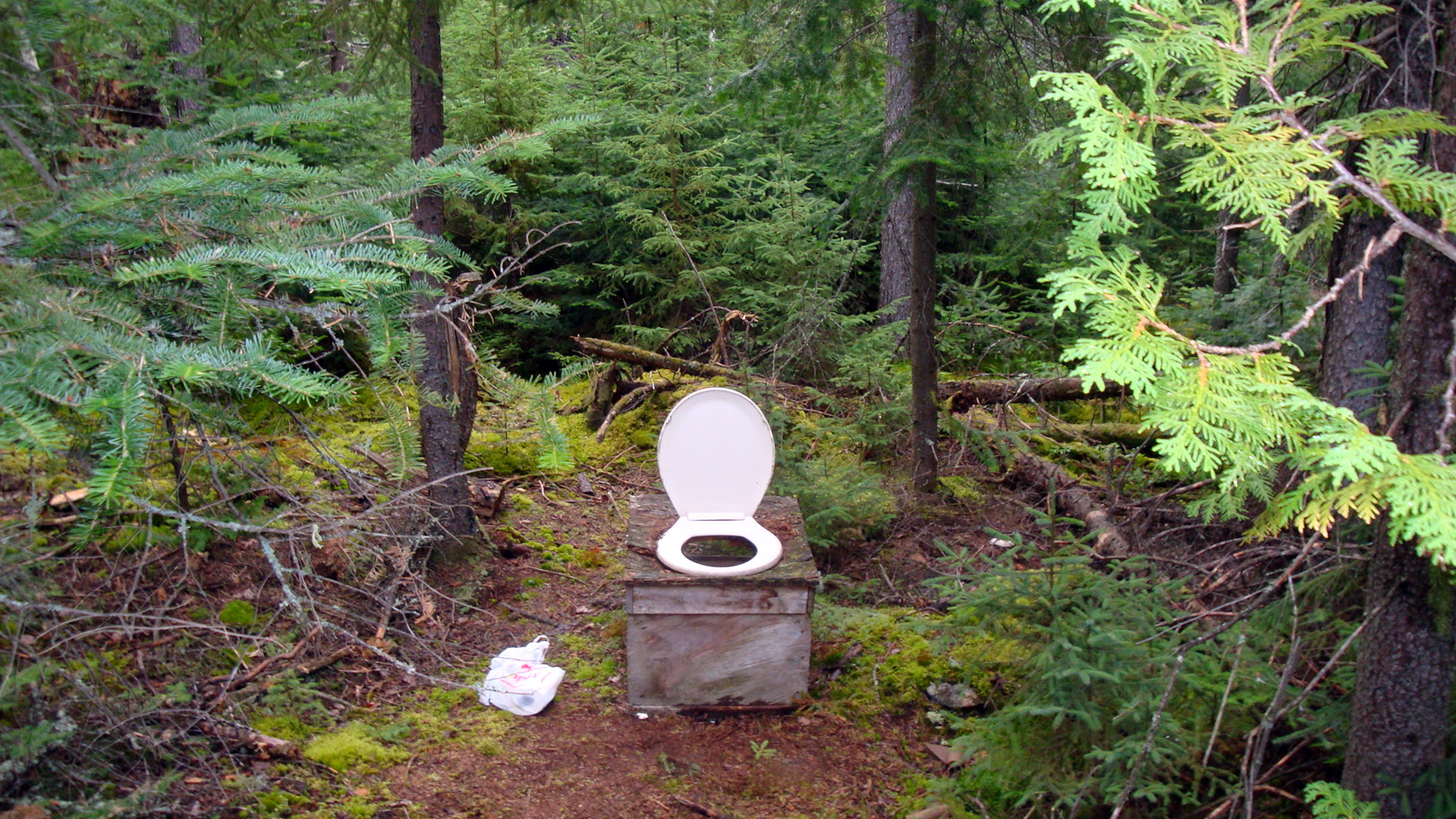 Camping How To Dig An Outdoor Toilet Outsider Magazine