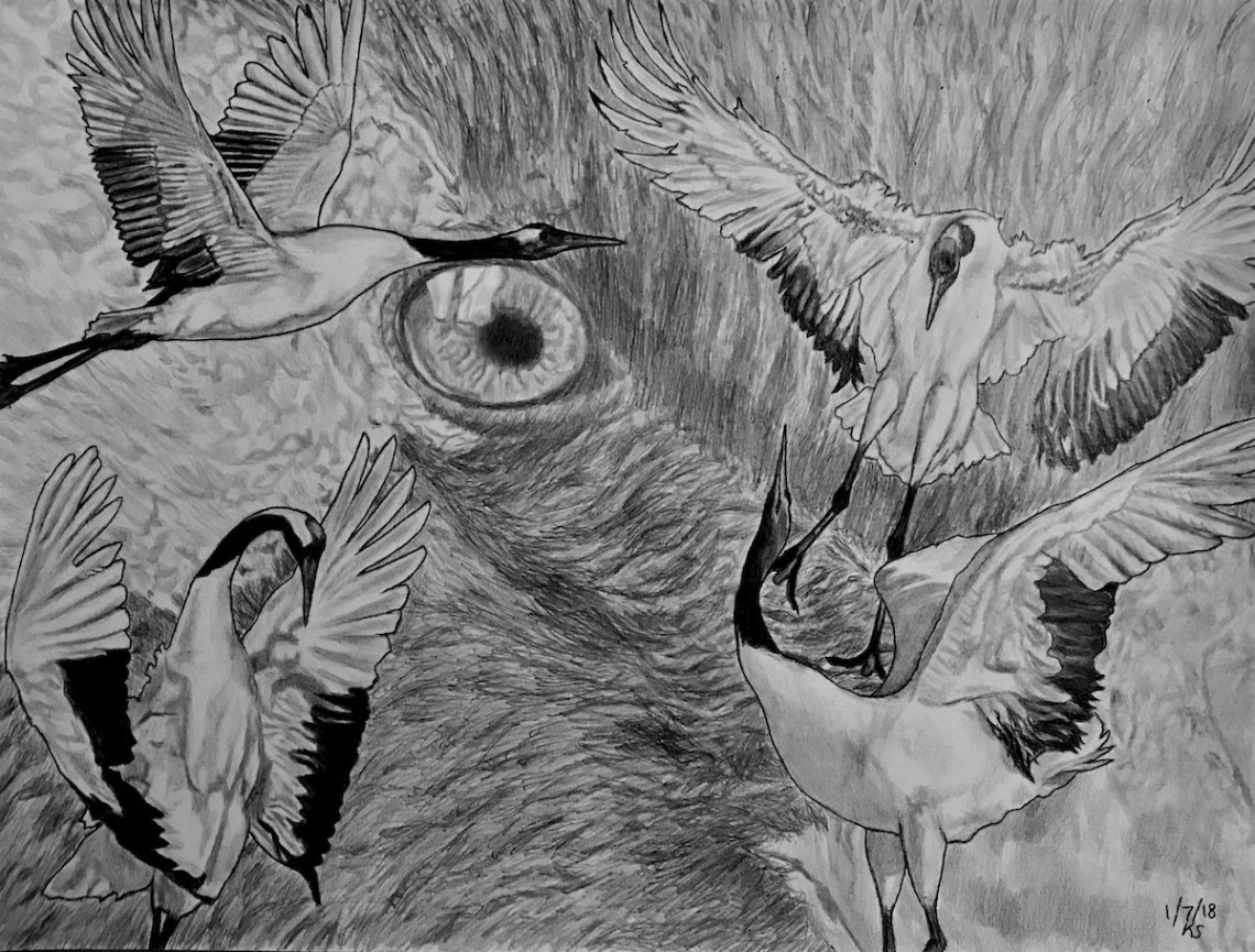 Crane Spirit Medium Pencil Drawing Size 9x12""