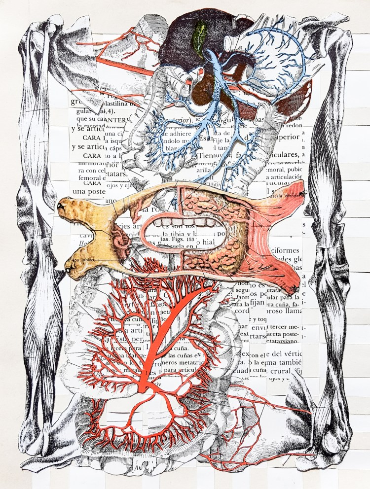 """At Arms Length Medium Analog collage on hand woven pages Size 7.5"""" x 10"""""""