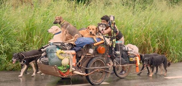 """หนุ่มใหญ่เข็น ซาเล้ง เดินสายช่วยเหลือ """" ลูกสุนัข """" ที่ยากไร้ทั่วประเทศเม็กซิโก 🐶👨🏻🦱🛵🦽🤲🏻♥️🇲🇽"""