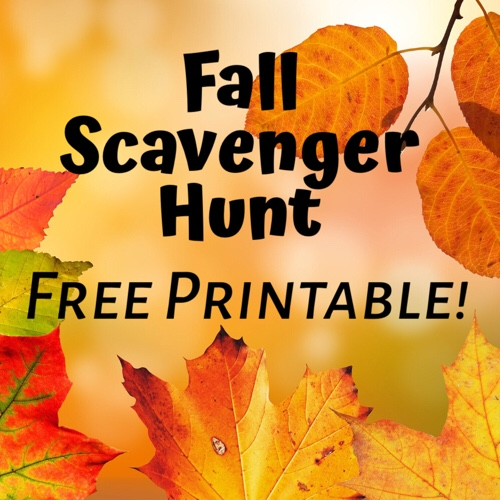 graphic about Fall Scavenger Hunt Printable identified as Slide Scavenger Hunt No cost PRINTABLE! Outdoors the Box Students