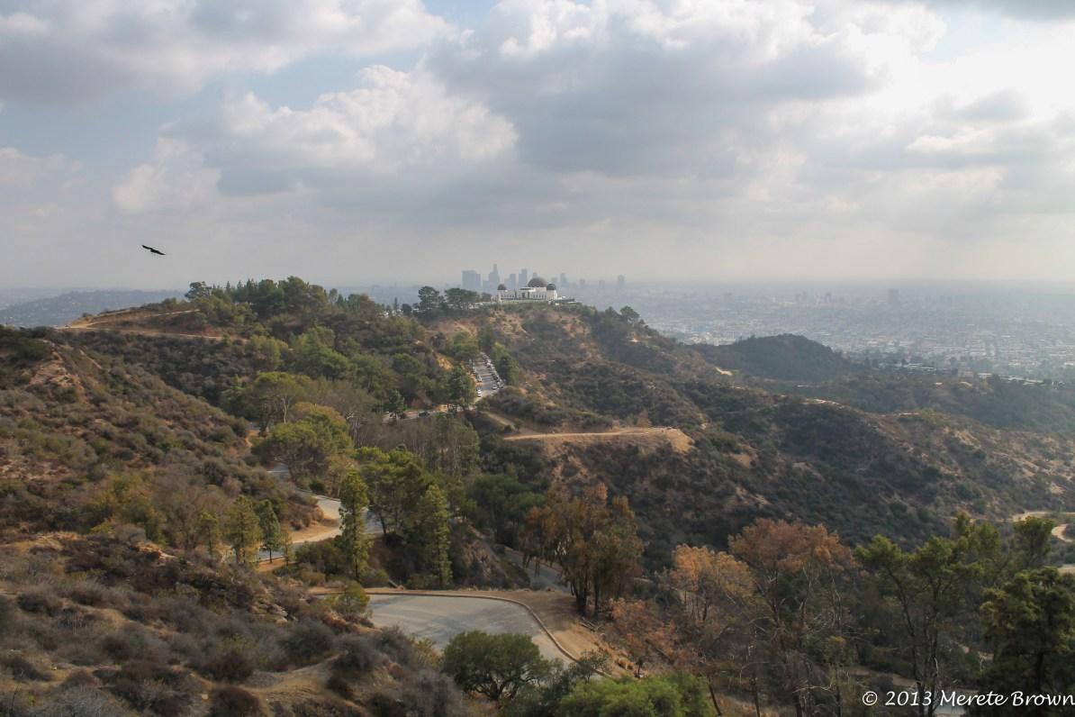 Mt. Hollywood