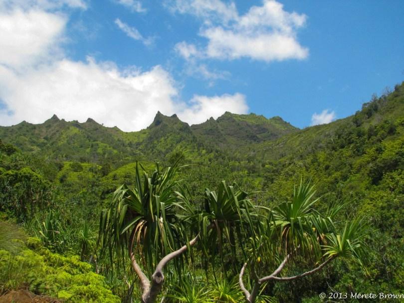 Kalalua Trail