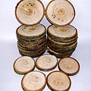 Tree Round - Basswood, Pack of 5