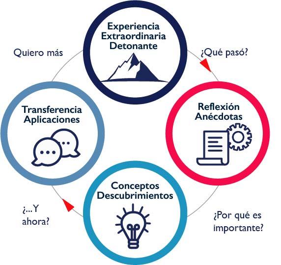 Methodología