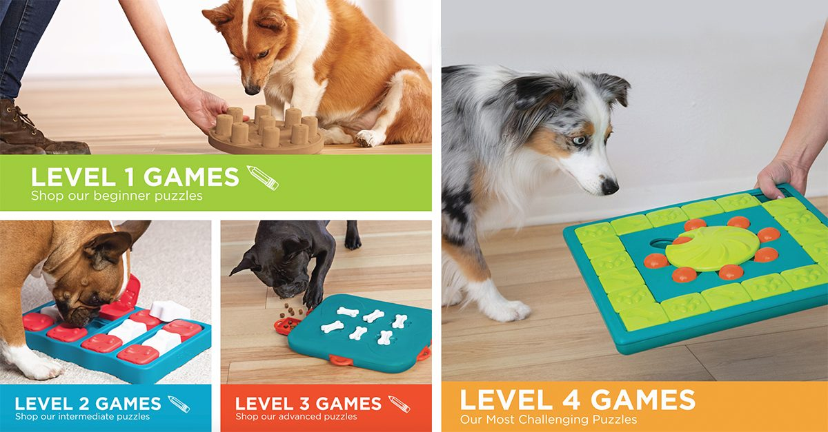 interactive dog toys for mental stimuation for dogs