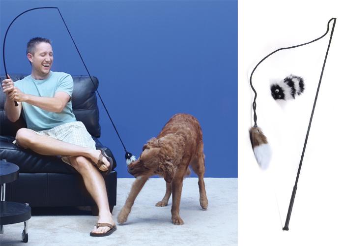 Dog toy, interactive dog toy, dog chase, dog wand