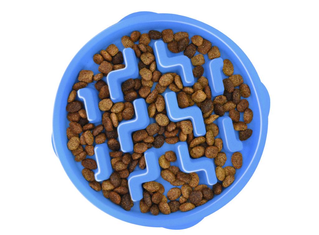 Fun Feeder Slo Bowl Notch Blue