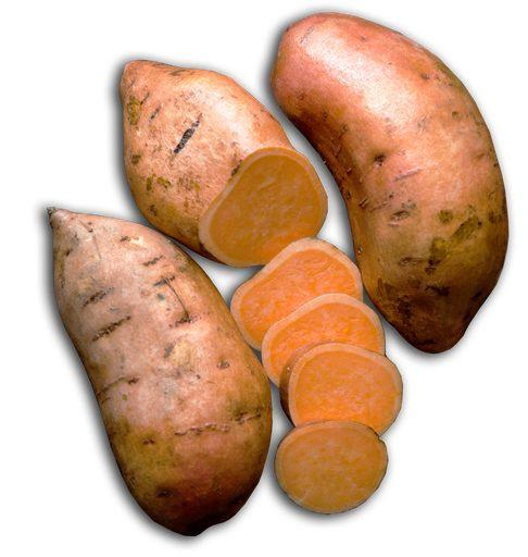 can dogs eat human food sweet potato treat