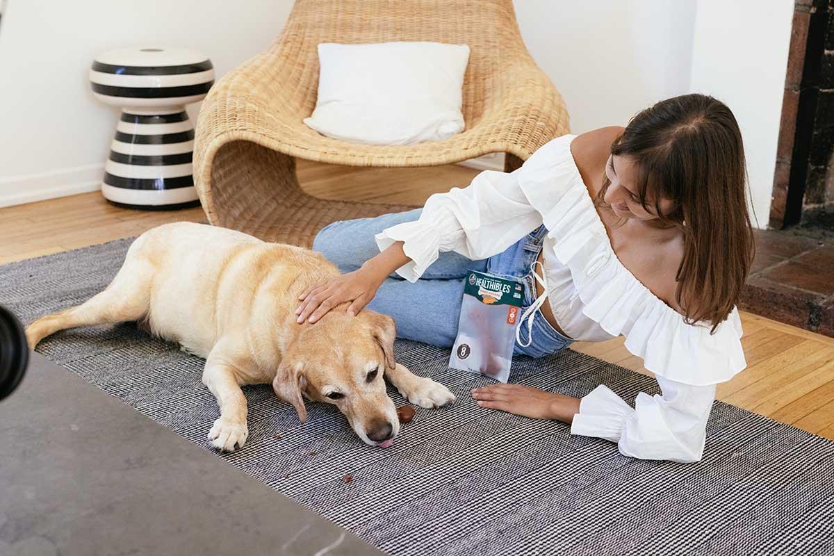 dog eating a treat near his human