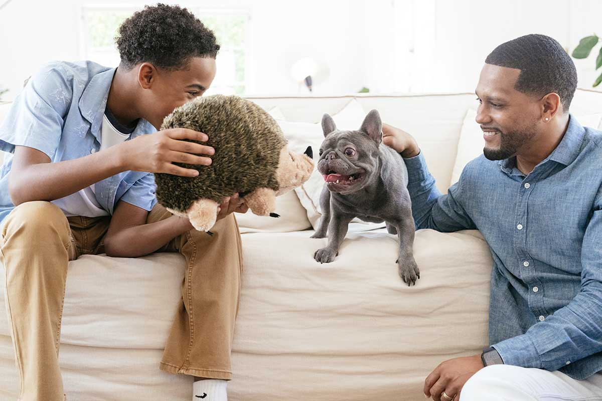 family with a french bulldog