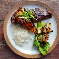 Grilled Teriyaki Steak