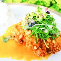 Macadamia Crusted Snapper with Smoky Mango Sauce