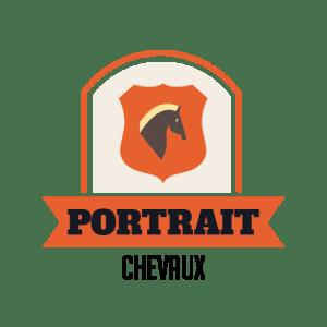Photographe Portrait Cheval - La Réunion 1