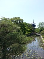 May: Kyoto, Japan. Toji pagoda. Mai : Kyoto, Japon. La pagode du Toji.