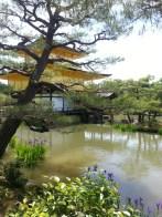 Golden Pavilion, Kyoto. Le pavillon d'or, Kyoto.