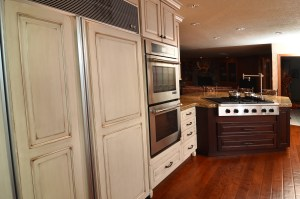 Hidden Appliances Ovation Design-Build