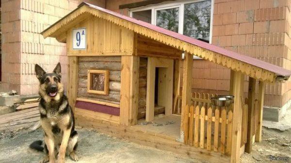 Чертежи и размеры будки для немецкой овчарки, инструкция ...